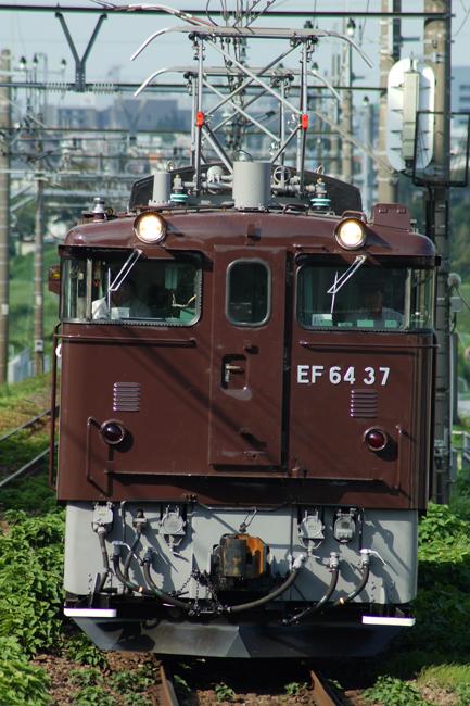 DSC04999(1).jpg