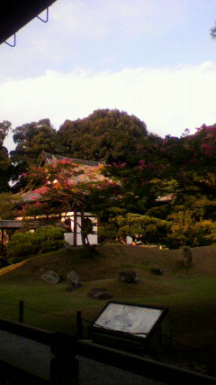 kodaiji2010