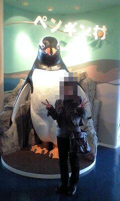大きなペンギンと