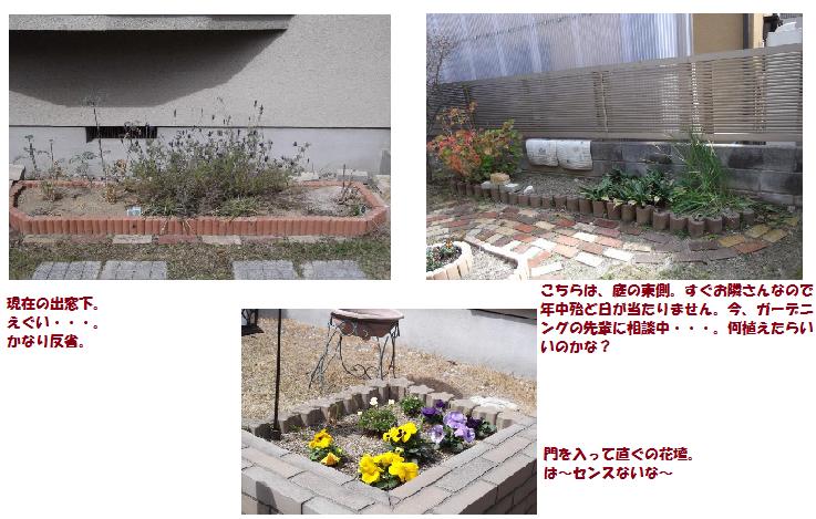 2012年3月25日の花壇。ひどい~