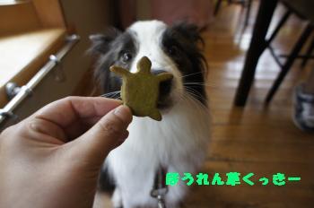 ほうれん草クッキー