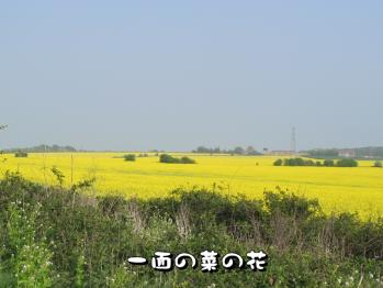 BLOG2011_0424_162132.jpg