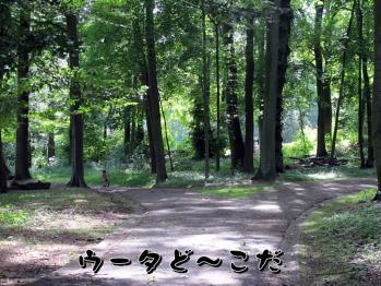BLOG2011_0522_160039.jpg