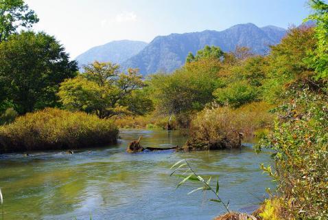 戦場ヶ原の川