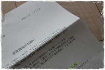IMG_1650-1.jpg