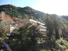 Horai Yu Yu Arena