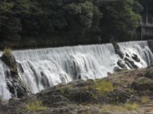 Hananoki Park