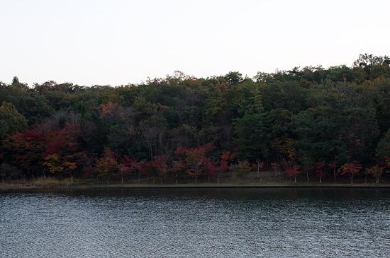 2012-11-15-9.jpg