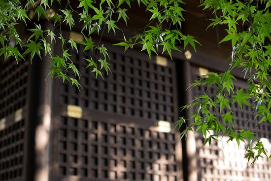 片山神社-6.jpg