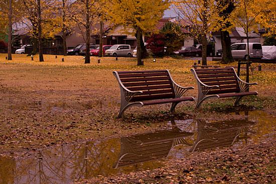 雨に濡れる公園のベンチ