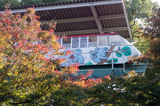 東山植物園便り-4