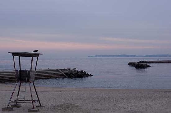 吉良の海-6