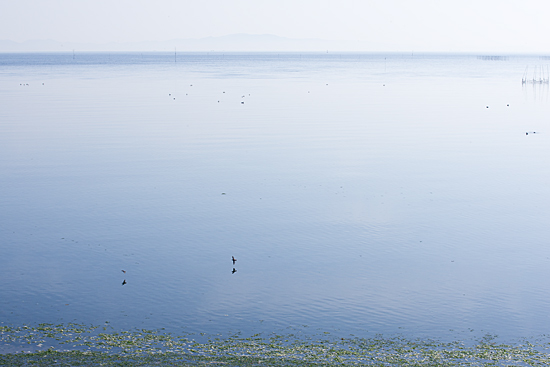 吉良の海2-6
