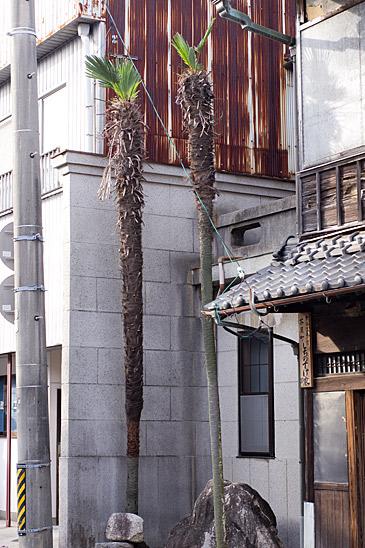 亀山3-9