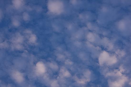 空コレ-13