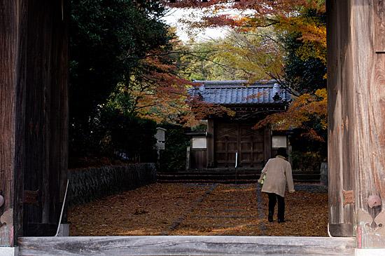 大森寺--9