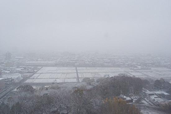 尾張旭雪-4