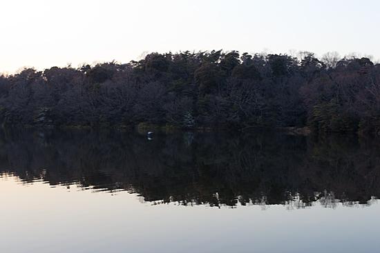 小幡緑地-4