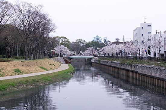 桜めぐり4-2