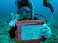 ダイビングライセンス取得