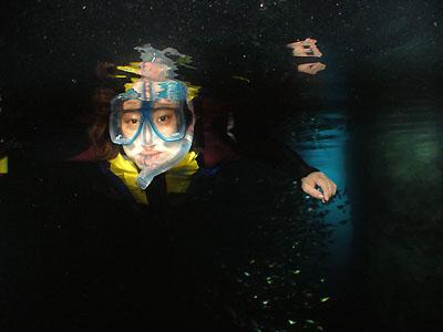 那覇出発青の洞窟シュノーケリング