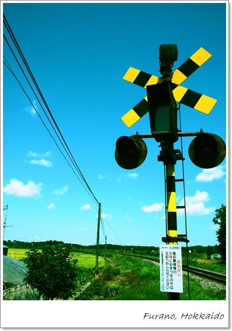 美瑛富良野(真央ちろ) 057