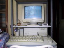 $うさぎと株とパソコン