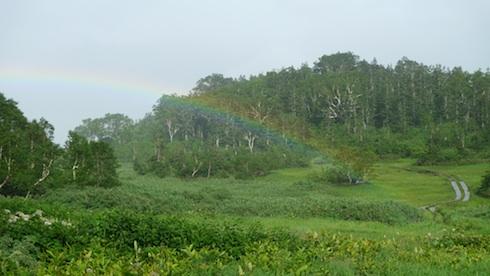 栂池自然園の虹