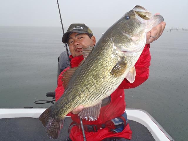 今回の最大魚