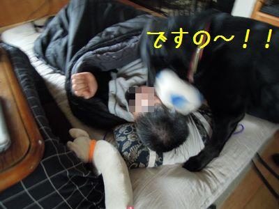 2013 03 01_3849