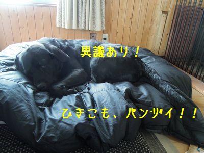 DSCN0395_20130501093540.jpg