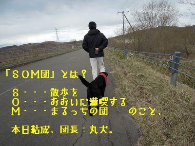 DSCN0431N.jpg