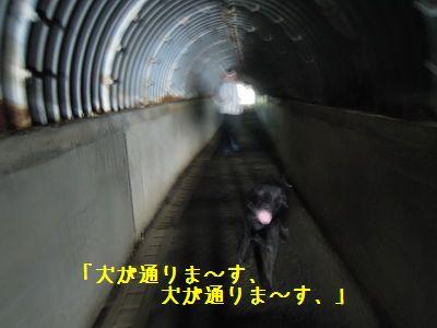 DSCN5869.jpg