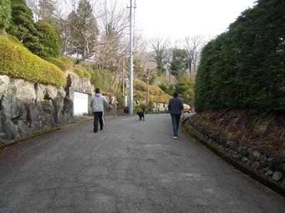 DSCN9464.jpg