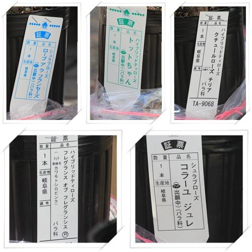 河本バラ福袋 2