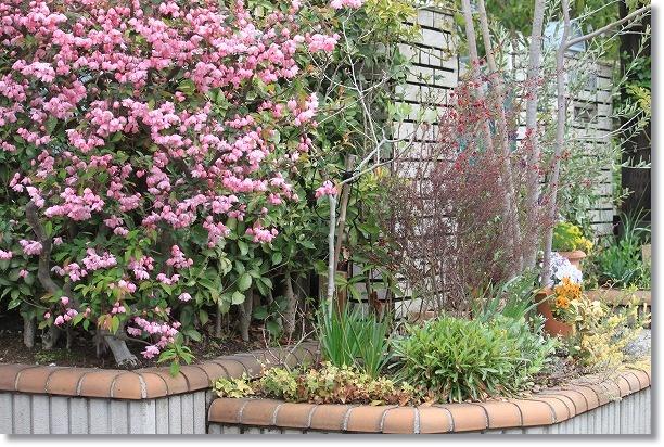 花木花壇 3