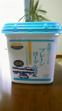yo-guruto88.jpg