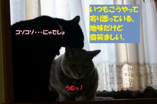20140917-02.jpg