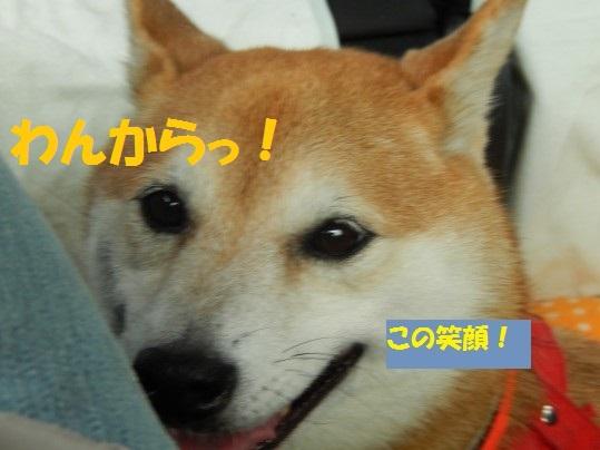 20140922-002.jpg