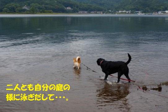 20140922-007.jpg