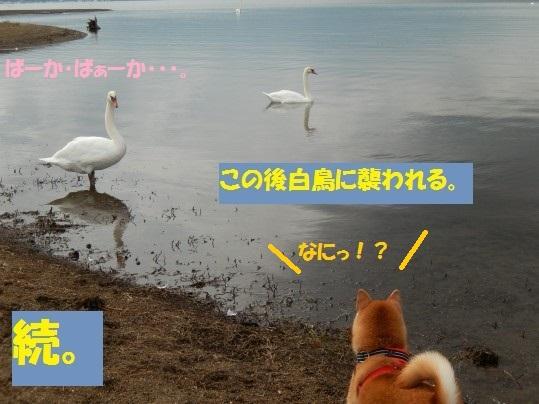 20140922-012.jpg