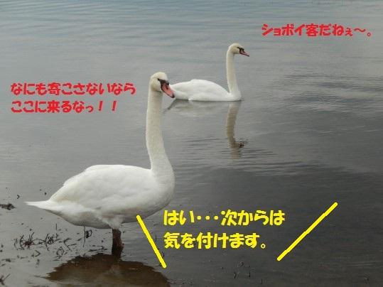 20140923-02.jpg