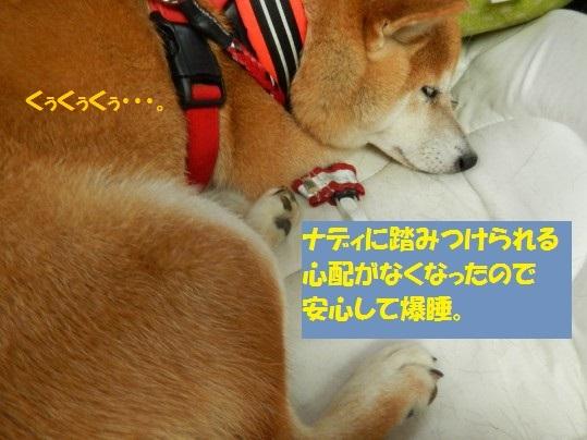20140923-11.jpg