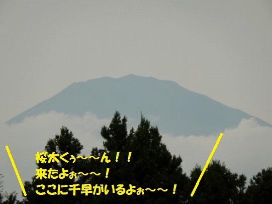 20140923-14.jpg