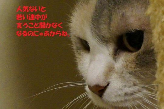 20140924-01.jpg