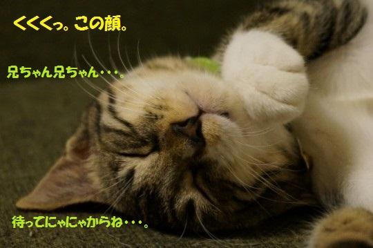20140927-09.jpg