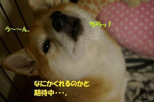 20141010-015.jpg