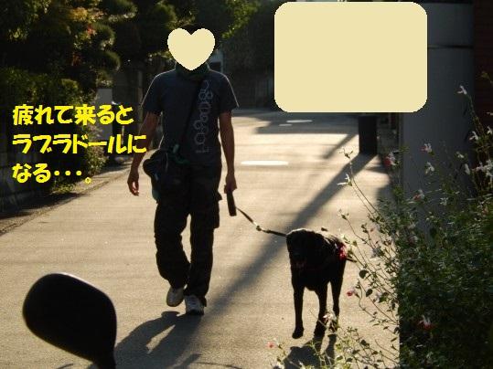 20141012-005.jpg