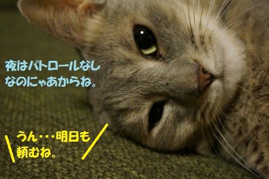 20141012-010.jpg