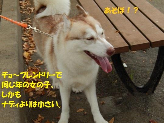 20141016-06.jpg